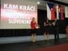 482-Prerov-2014-konference