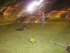 srni2012-zabava-005
